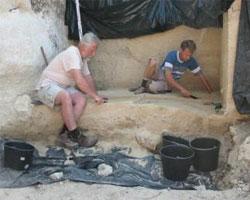 Раскопки в Крыму опровергают теорию Дарвина